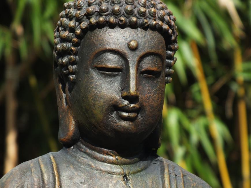 Die Vergangenheit ist nicht mehr. Die Zukunft ist noch nicht gekommen. Das Leben ist im Hier und Jetzt! - Buddha